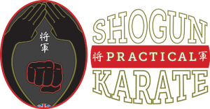 Shogun Practical Karate